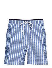 Jules Stripe 1368 - BLUE STRIPE