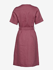 Noa Noa - Dress short sleeve - midi jurken - rose wine - 1