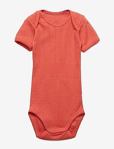 Baby Body - PAPRIKA