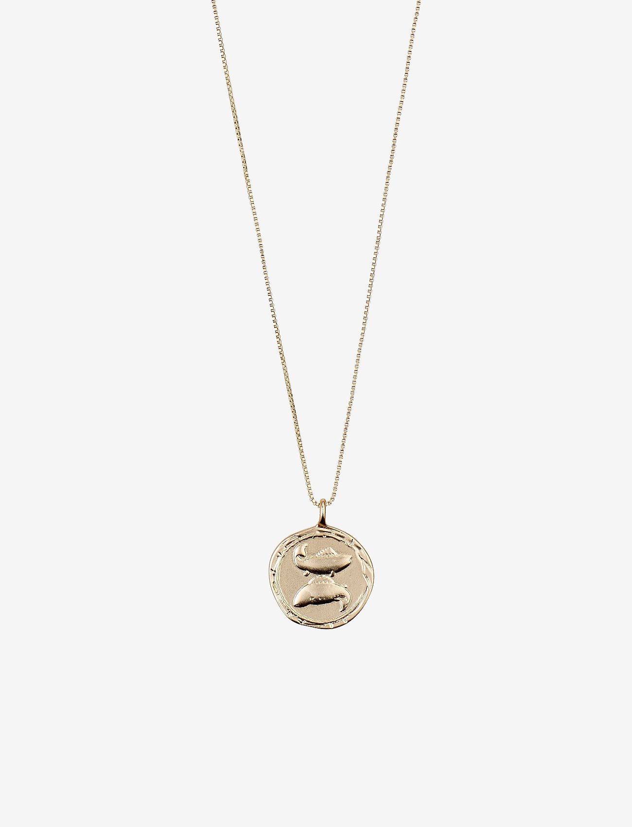 Pisces Zodiac Sign (Gold Plated) (23.96 €) - Pilgrim RABos