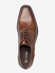 Playboy Footwear - 6508 - snøresko - brown - 3