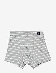 Polarn O. Pyret - Boxer PO.P Stripe 1-p - doły - greymelange - 0