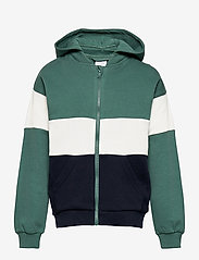 Polarn O. Pyret - Zip up l/s hood School - sweatshirts & hoodies - blue spruce - 0