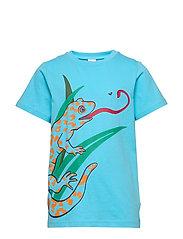 T-shirt frontprint s/s School - BACHELOR BUTTON