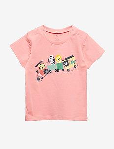 T-shirt S/S Baby - SALMON ROSE