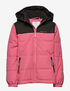 Jacket Padded Solid School - FRUIT DOVE