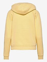 Polo Ralph Lauren - Pony Fleece Hoodie - hoodies - banana peel - 2