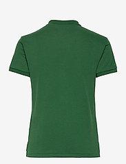 Polo Ralph Lauren - The Earth Polo - polohemden - stuart green - 2