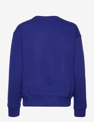 Polo Ralph Lauren - Polo Match Graphic Fleece Sweatshirt - sweatshirts - fall royal - 1