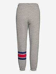 Polo Ralph Lauren - Logo Fleece Sweatpant - sweatpants - dark vintage heat - 1