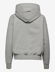 Polo Ralph Lauren - LW SEASONAL FLEECE-LSL-SWS - hættetrøjer - andover heather - 1