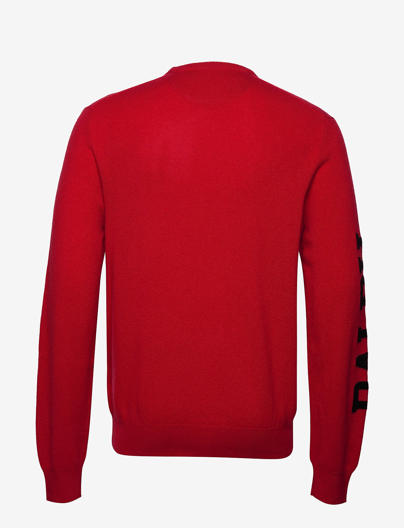 Lscnbigpp-long Sleeve-sweater (Park Ave Red W/ B) (1427.25 kr) - Polo Ralph Lauren