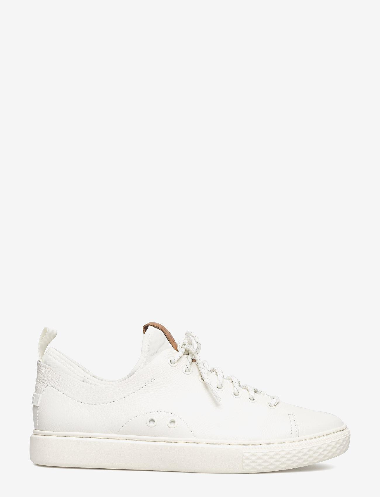 Polo Ralph Lauren Dunovin Leather Sneaker - Sneakers WHITE - Schuhe Billige