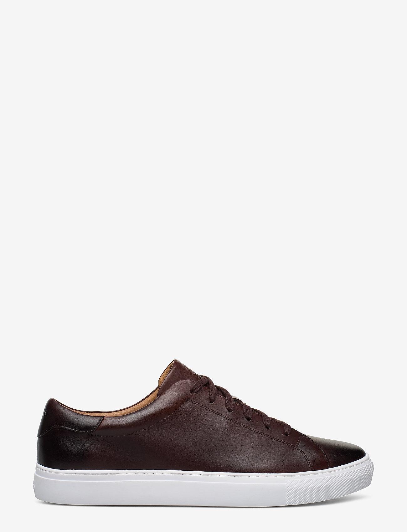 Polo Ralph Lauren - Jermain Leather Sneaker - low tops - polo brown - 1