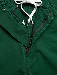 Polo Ralph Lauren - Classic Fit Polo Prepster - chinos shorts - new forest - 5