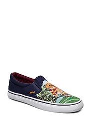 Thompson Bear Graphic Sneaker - BEAR SCENE