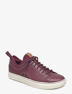 Dunovin Leather Sneaker - CLASSIC WINE