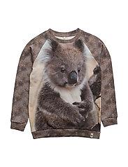 Basic Sweat Koala - KOALA