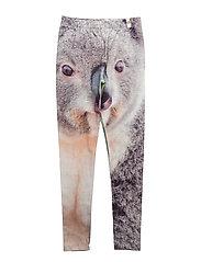 Leggings Koala AOP - KOALA
