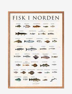 Scandinavien fish, stone - affiches - multi-colored