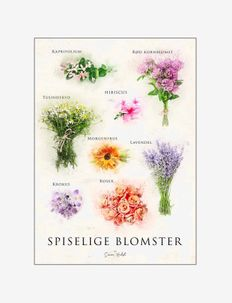 Edible flower, stone - affiches - multi-colored