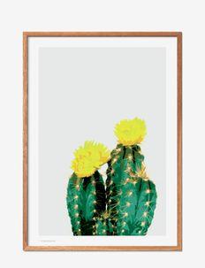 Opuntia Cactus - affiches - multi-colored