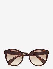 Prada Sunglasses - 0PR 05TS - rond model - havana - 0