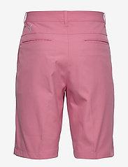 PUMA Golf - Jackpot Short - golf shorts - rapture rose - 1