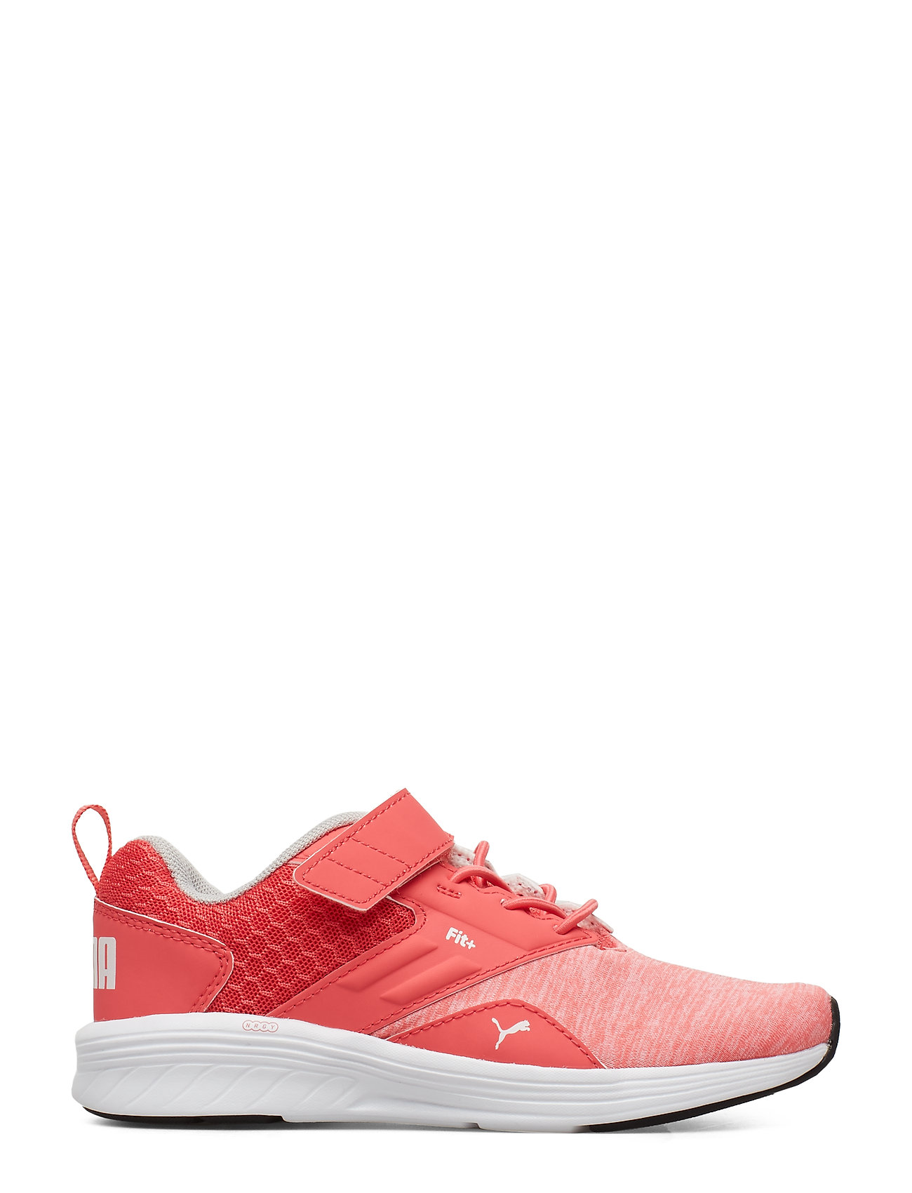 Nrgy Comet V Ps Shoes Sports Shoes Running/training Shoes Lyserød PUMA