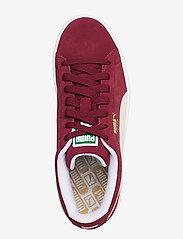PUMA - Suede Classic+ - låga sneakers - cabernet-white - 3