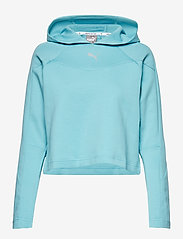 PUMA - EVOSTRIPE Hoody - navel shirts - milky blue - 0