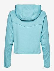 PUMA - EVOSTRIPE Hoody - navel shirts - milky blue - 1