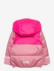 PUMA - Minicats Padded Jacket - isolerade jackor - foxglove - 1