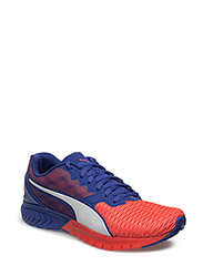 IGNITE Dual Wn's - RED BLAST-ROYAL BLUE