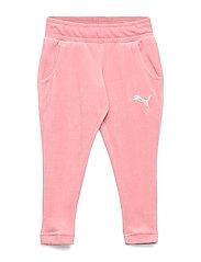 Alpha Velvet Pants G - BRIDAL ROSE