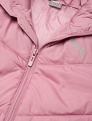 PUMA - ESS Padded Jacket G - dunjakker & forede jakker - foxglove - 2