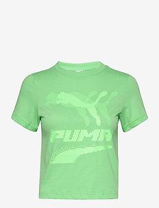 Evide Graphic Tee - któtkie bluzki - summer green