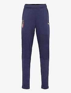 FIGC Training Pant w.z/p Jr - sports pants - peacoat-puma team gold