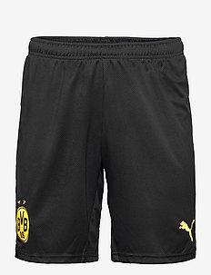BVB Shorts Replica - träningsshorts - puma black-cyber yellow
