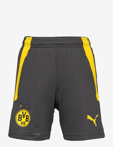 BVB Training Shorts Jr w/ pockets w/ zip - sportshorts - asphalt