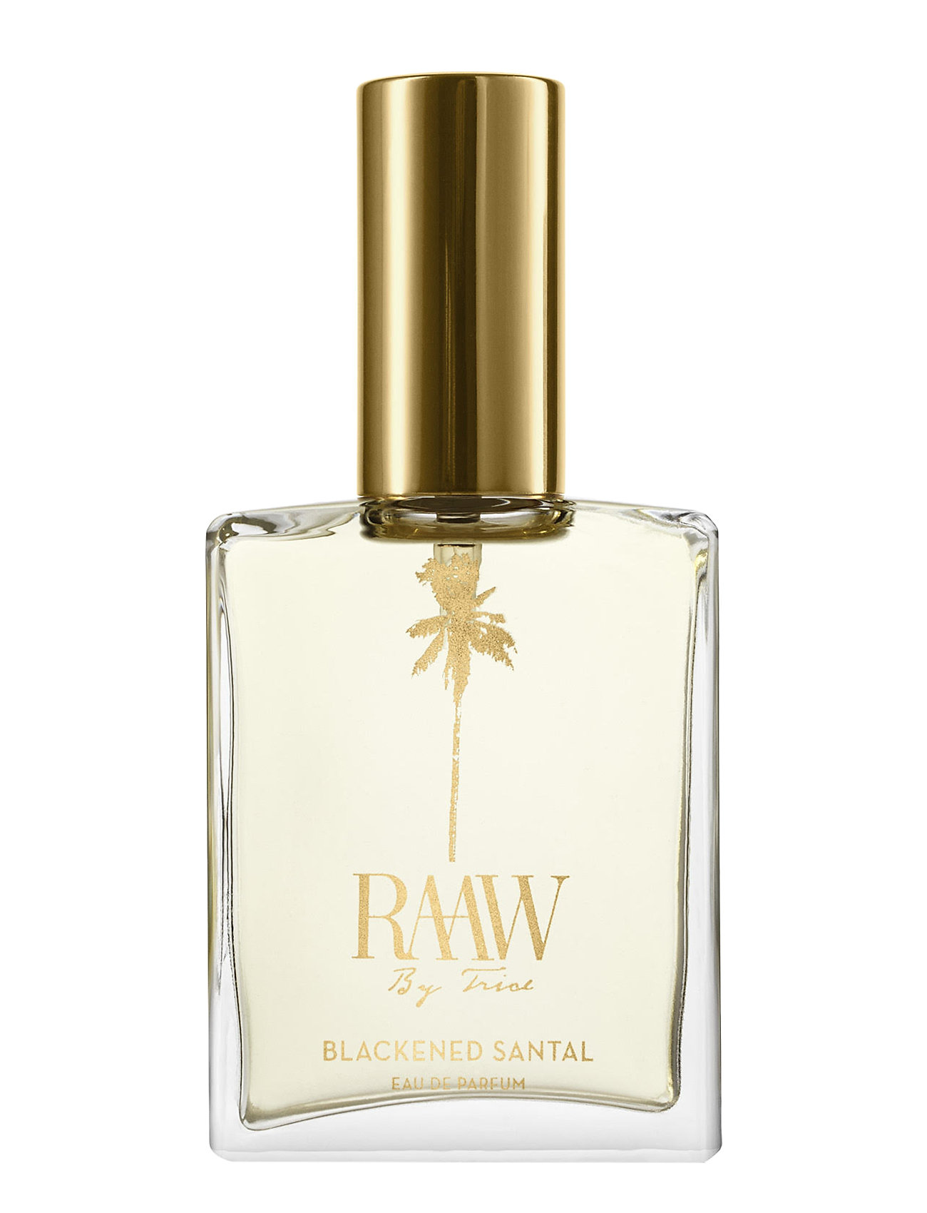 Raaw by Trice blackened Santal Eau de Parfum - NO COLOR