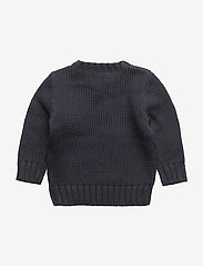 Ralph Lauren Baby - Flag Cotton Sweater - neuleet - hunter navy - 1