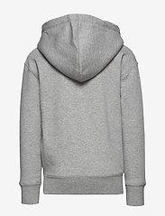 Ralph Lauren Kids - Big Pony Fleece Hoodie - hoodies - lt grey heather - 1