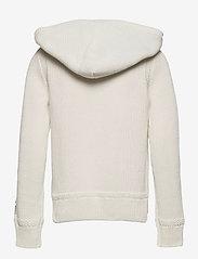 Ralph Lauren Kids - Big Pony Hooded Cotton Sweater - pulls à capuche - trophy cream mult - 1