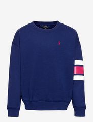 Logo Striped Fleece Sweatshirt - FALL ROYAL