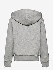 Ralph Lauren Kids - Polo Sport Fleece Hoodie - kapuzenpullover - andover heather - 1