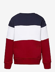 Ralph Lauren Kids - Polo Sport Fleece Sweatshirt - sweatshirts - rl2000 red multi - 1