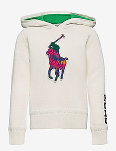 Big Pony Hooded Cotton Sweater - pulls à capuche - trophy cream mult
