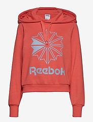 Reebok Classics - CL FL BIG LOGO HOODIE - hupparit - rosett - 1