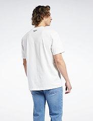 Reebok Classics - CL INTL TEE NORTH - t-shirts - chalk - 3